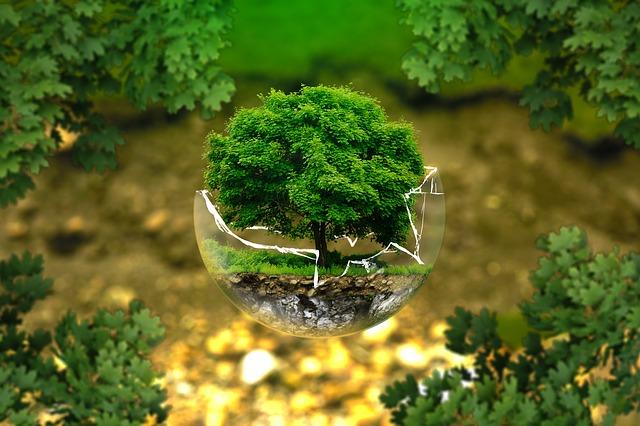 Herco en el Día Mundial de Medioambiente