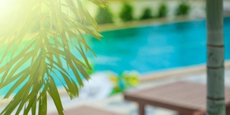 ¿Cuál es el mejor limpiafondos de piscina?